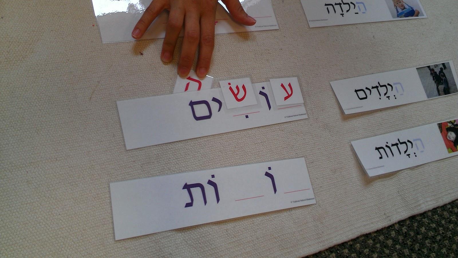 JMTC Blog - Day 8 | Jewish Montessorian