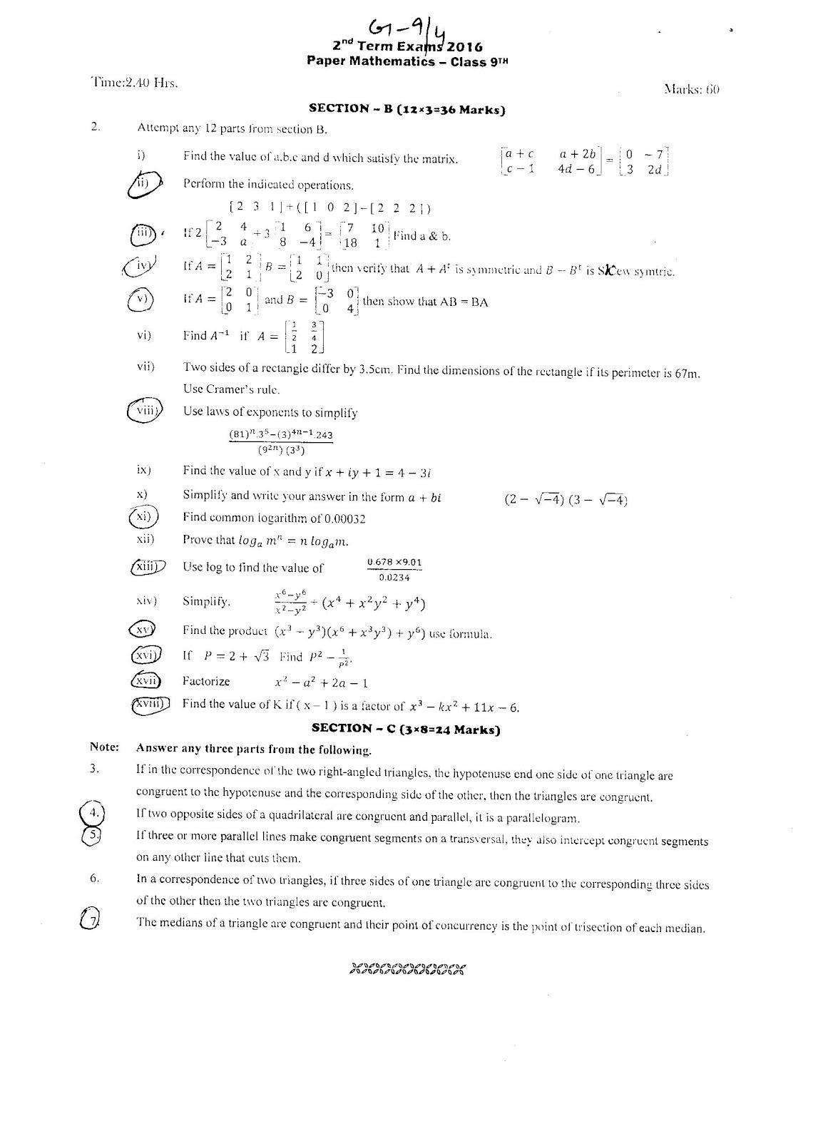 fresh essays math term paper questions famu online