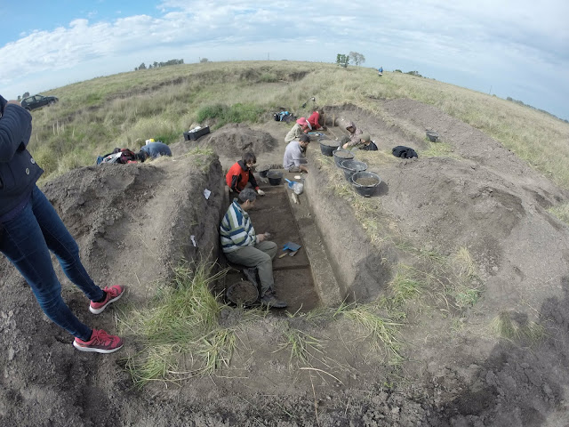 Late Pleistocene giant ground sloth kill and butchering site found in Argentina