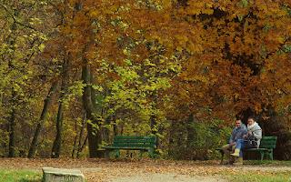 http://fotobabij.blogspot.com/2016/02/w-jesiennych-okolicznosciach-przyrody.html