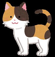 猫の模様のイラスト(三毛)