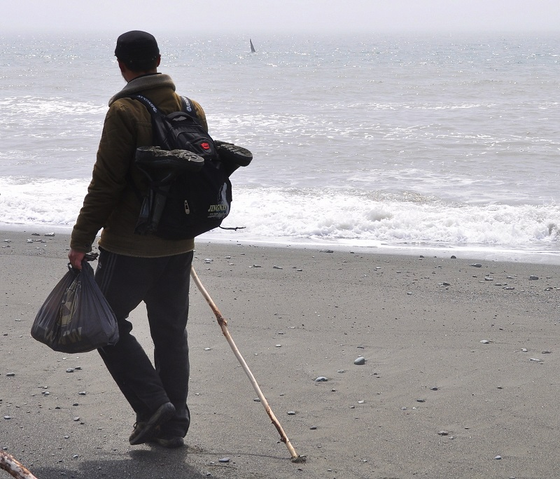 плавник косатки тихий океан камчатка