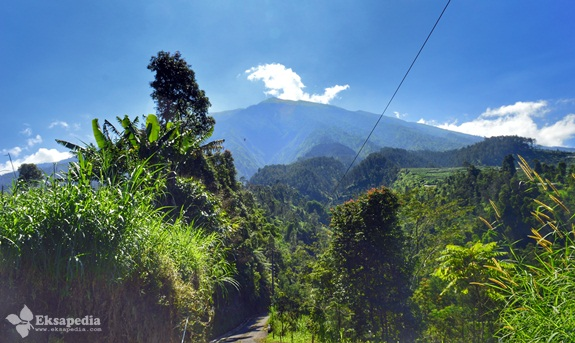 Pemandangan Gunung Merbabu Dari Sawangan