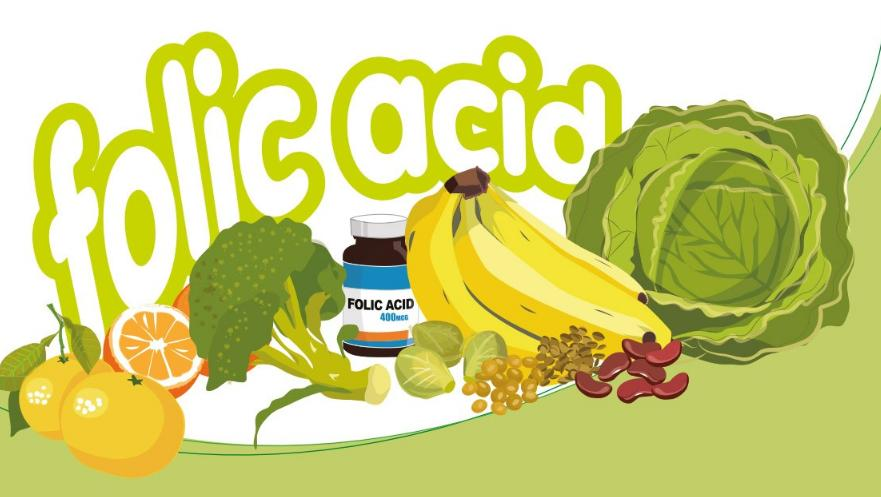 What is Folic Acid Used For in The Body