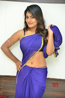 Actress Priya in Blue Saree and Sleevelss Choli at Javed Habib Salon launch ~  Exclusive Galleries 028.jpg