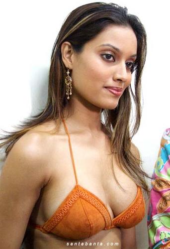 Tamil Actress Bikini Photo - Bollywood Actress Hd Wallpapers-7091