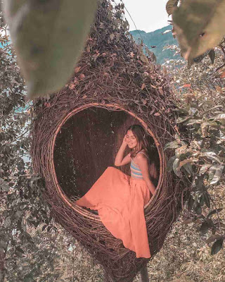 Foto Wahana Sarang Burung Wisata Wanagiri Hidden Hills Bedugul