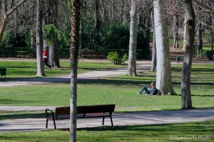 マドリードのレティーロ公園で芝生で読書する女の子