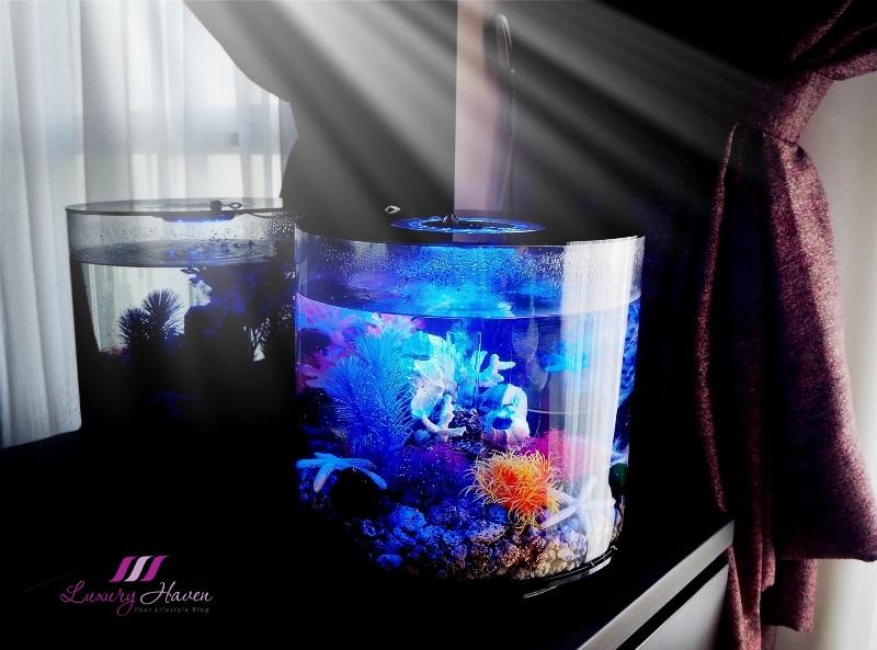 aquarium à tube oase biorb avec examen de l'éclairage mcr