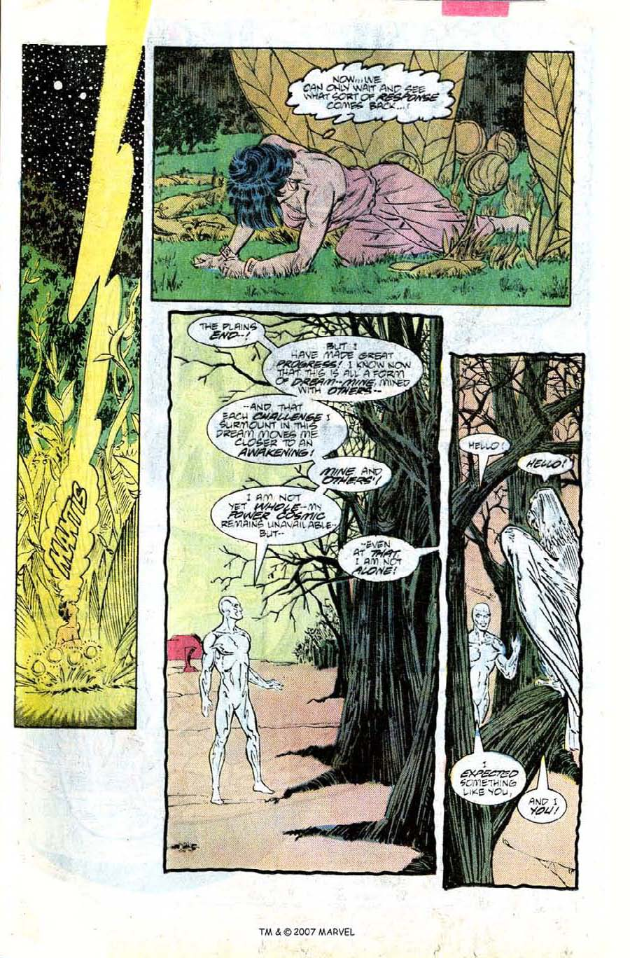Read online Silver Surfer (1987) comic -  Issue #8 - 21