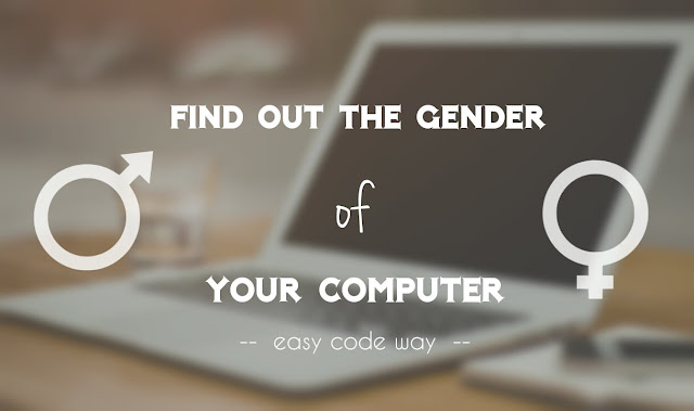 Find Out the Gender of Your Computer