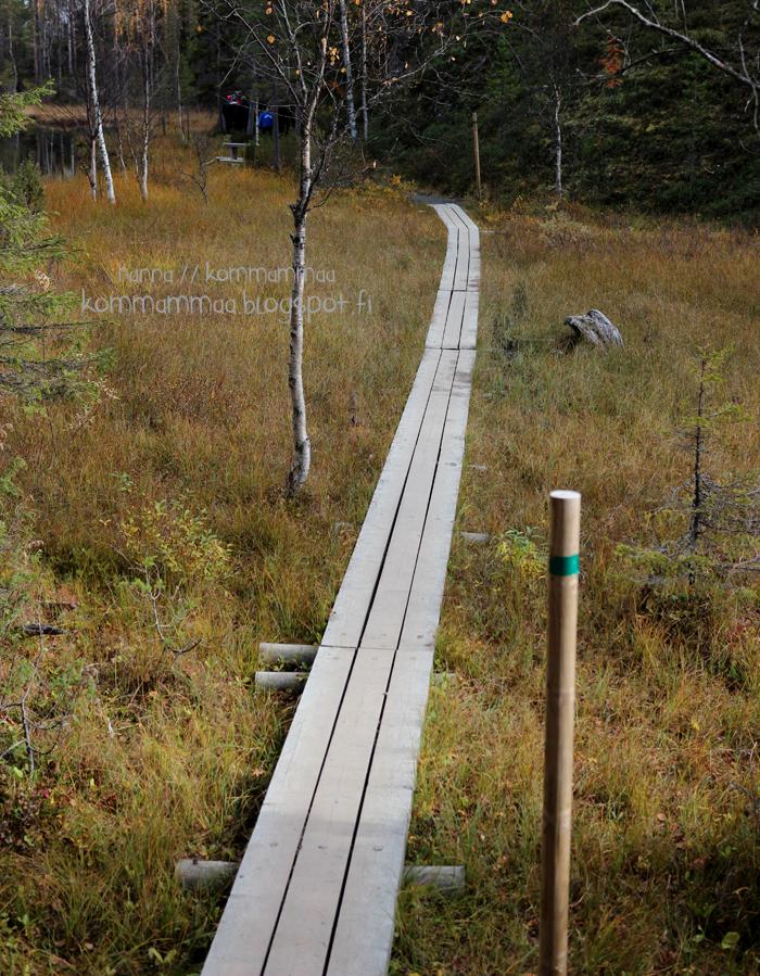pieni karhunkierros oulanka oulangan kansallispuisto ruska pitkospuut