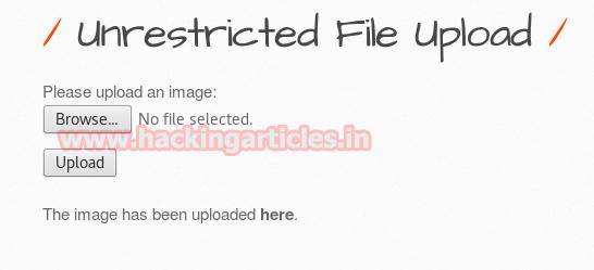 Web Shells: Teste de invasão (guia para iniciantes