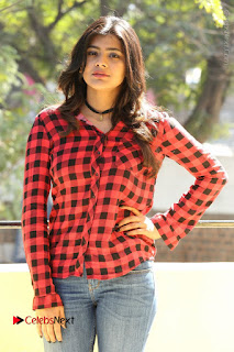 Actress Hebah Patel Stills in Blue Denim Jeans at Nanna Nenu Naa Boyfriends Movie Success Meet  0055.JPG