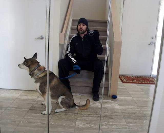 Izzy The Egyptian American Doggo [Video]