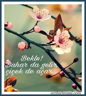 bahar nedir, beklemek, çiçek, kış, resimli mesajlar, sabır, sevgili, tomurcuk, islamda bahar farkı, aşık veysel bahar, karacaoğlan bahar şiiri, vehbi vakkasoğlu yazıları, vehbi vakkasoğlu, islamda bahar