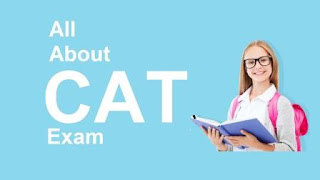 What is CAT Exam?