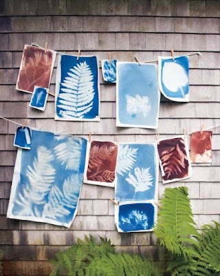 leaf-nature-sun-prints-craft-for-kids