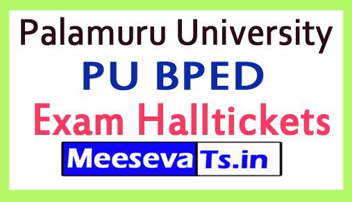 Palamuru University BPED Exam HallTickets Download