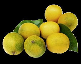 Um Limão Para a Vida! Tipos e benefícios!