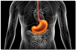 cara menyembuhkan sakit lambung / perut perih secara alami