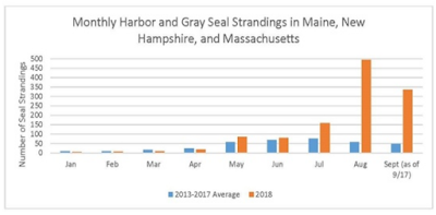 https://www.fisheries.noaa.gov/new-england-mid-atlantic/marine-life-distress/2018-pinniped-unusual-mortality-event-along-northeast