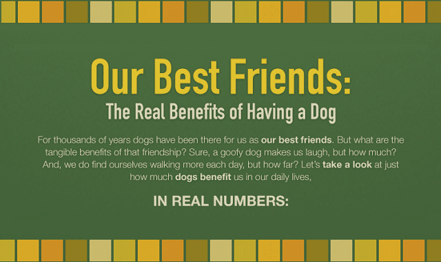 The Real Benefits of Having a Dog