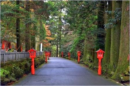 ทางเดินสู่ศาลเจ้าฮาโกเน่ (Hikone Shrine)