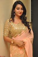 Bhanu Shri looks stunning in Beig Saree choli at Kalamandir Foundation 7th anniversary Celebrations ~  Actress Galleries 042.JPG