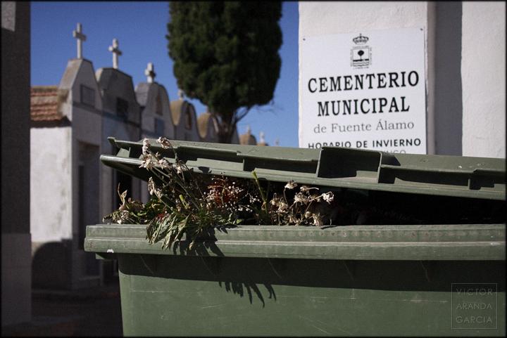 fotografia,arriba_extraña,flores,serie,arte,contenedor,cementerio,fuente_alamo
