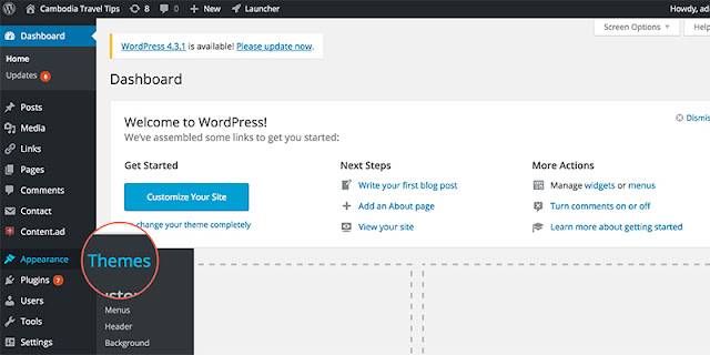 Install Wordpress Theme Function