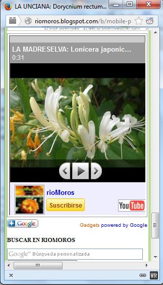 videos-de-plantas-en-el-móvil