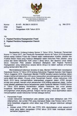 Pengadaan cpns pppkTahun 2019