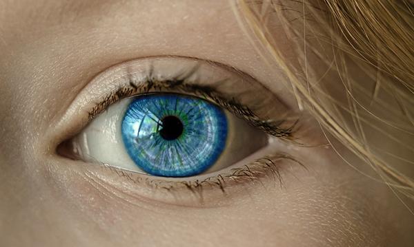 eyelash transplant process