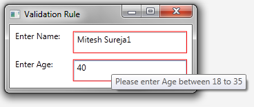 Mitesh Sureja's Blog: Validation Rules in WPF