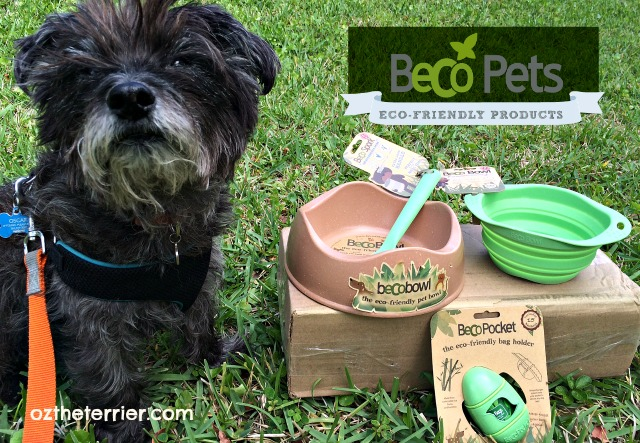 Oz with BeCo Pets eco-friendly pet products
