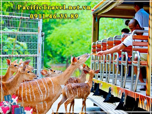 Du lịch Thái Lan 5 ngày giá tốt lễ noel và tết dương lịch 2017