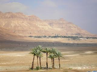 PRO Kurort Лечение на курортах Израиля
