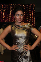 Shreya Saran in Skin Tight Golden Gown ~  Exclusive 025.JPG