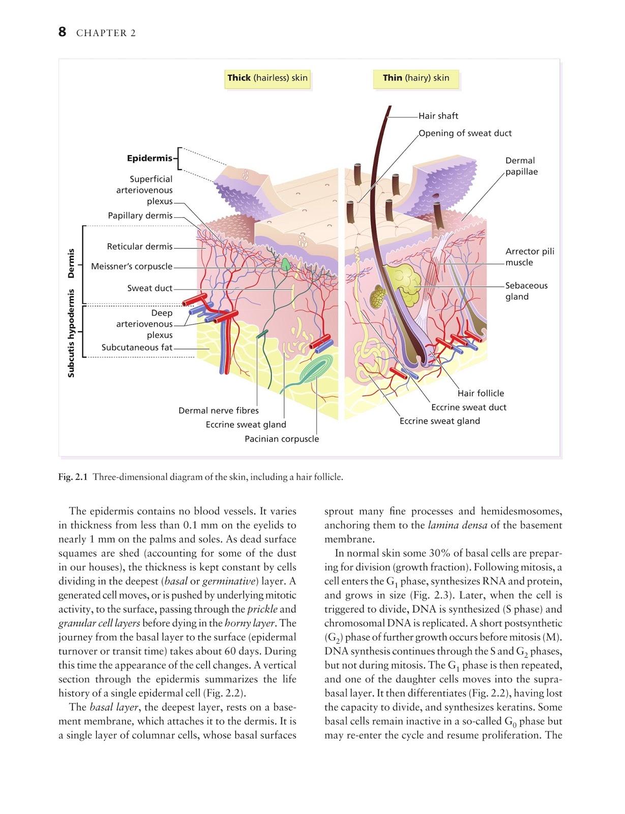 Medicine by Sfakianakis G. Alexandros: Skin disease in ...