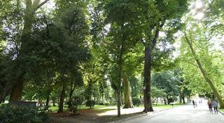 Oviedo, Campo de San Francisco.