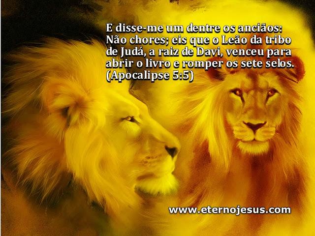 Papéis de Parede – Leão da Tribo de Judá