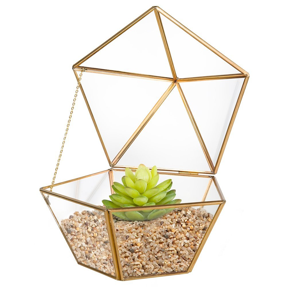 14 Ways to Display Succulents - Brass Geo Terrarium
