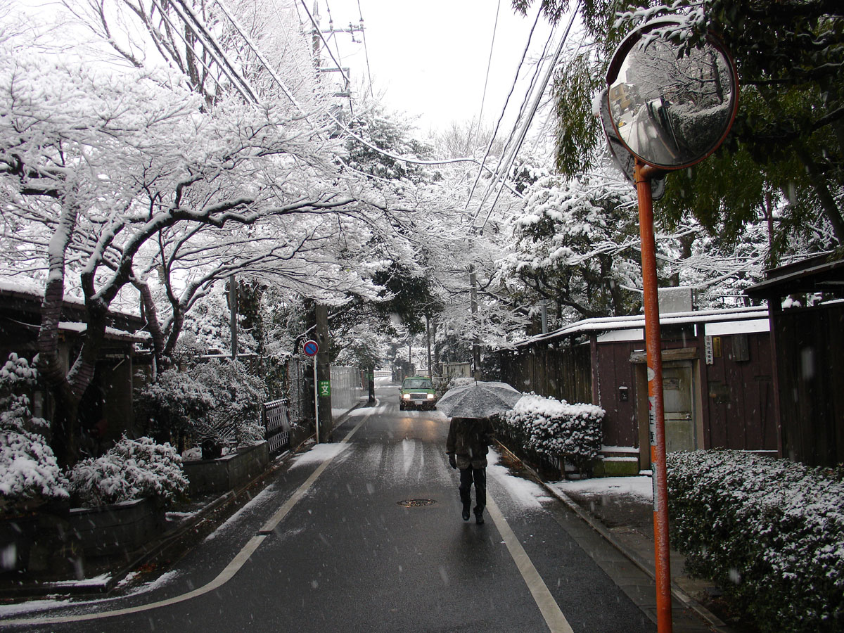 tokyo japan weather comparison of svalbard norway. Black Bedroom Furniture Sets. Home Design Ideas