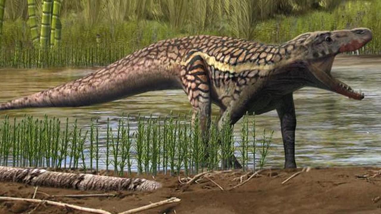 Investigadores descubren una especie desconocida de reptil y antecesora de los dinosaurios
