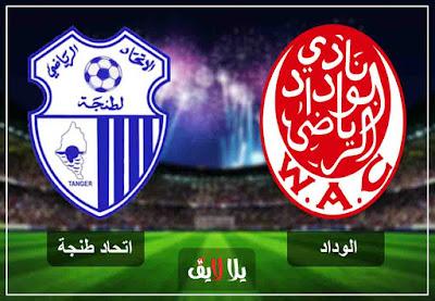 مشاهدة مباراة الوداد واتحاد طنجة بث حي مباشر اليوم
