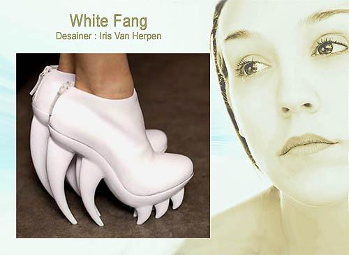 Desain untuk model sepatu wanita yang unik dan cantik