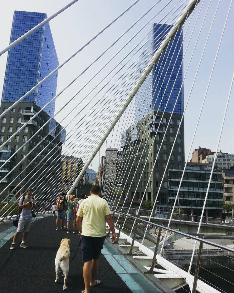 Puente de Calatrava sobre el Nervión