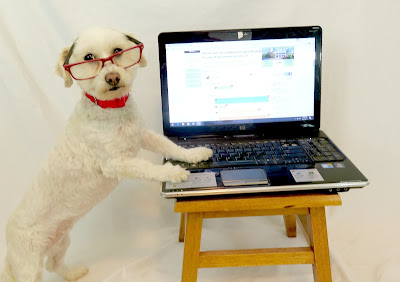 Blogging tips from the BlogPaws Blogging & Social Media Conference