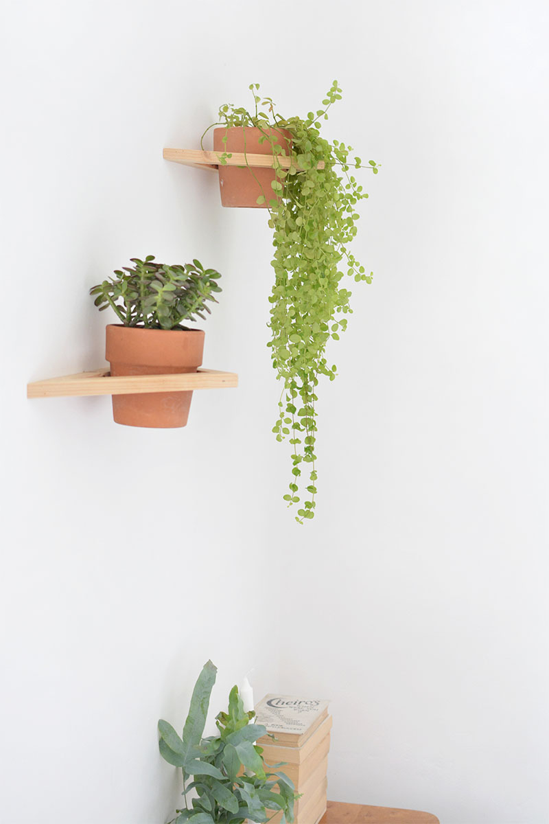 DIY geo wall planter